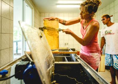 21. Désoperculation d'un cadre de miel