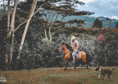 Paco & les chevaux-15