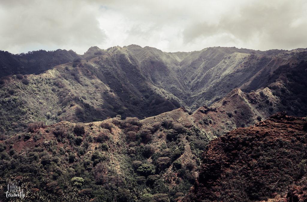 Une histoire marquisienne, Te Fenua Enata
