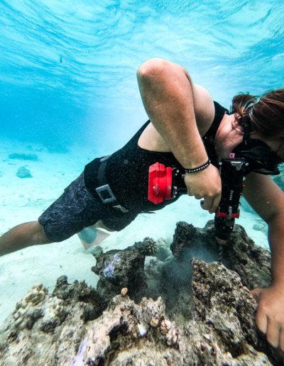 22. Plantation de corail à la perçeuse-1